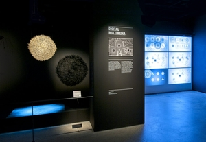 Love Lace Exhibition - Powerhouse Museum