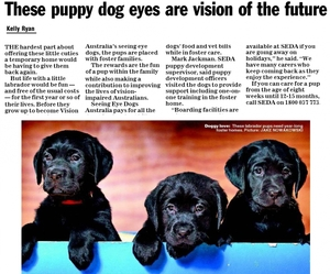 Seeing Eye Dogs Australia