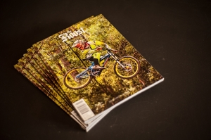 The Roost Volume 1. Issue 02