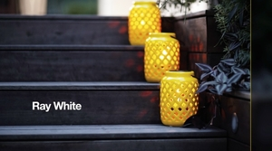 Ray White Know_How