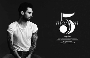 Maroon 5 Cover Story, International Distribution