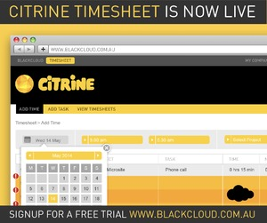 CITRINE Timesheet Launch