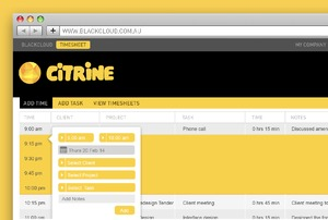 CITRINE Timesheet Feature 'Drag and Pop'