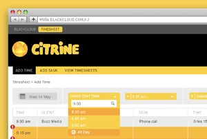 CITRINE Timesheet Feature 'All Day'