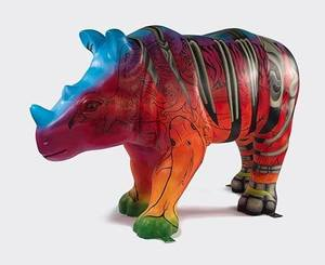 """Fragility"", Wild! Rhino project"