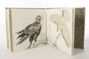 Wings Artist book