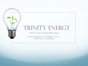Trinity Energy Business Plan