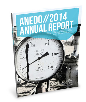 ANEDO Annual Report | Print Publication