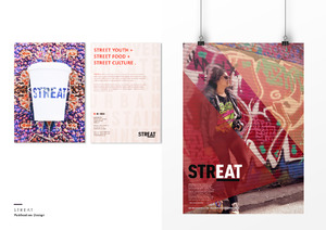 STREAT Publication