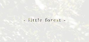 2016 - little forest