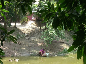 Bangladesh's poison water - A story for The Wire