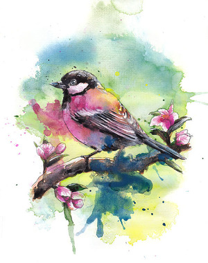 Watercolour birds