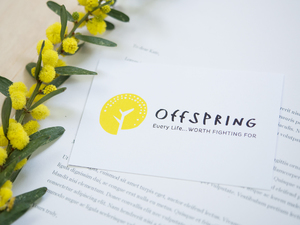 Offspring Project Identity & Collateral