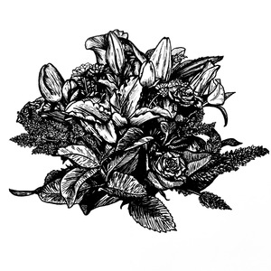 Black and White Botanical Illustration