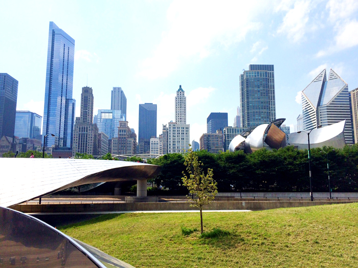 chicago-skyline-livvyland-blog-vacation-millenium-park-view