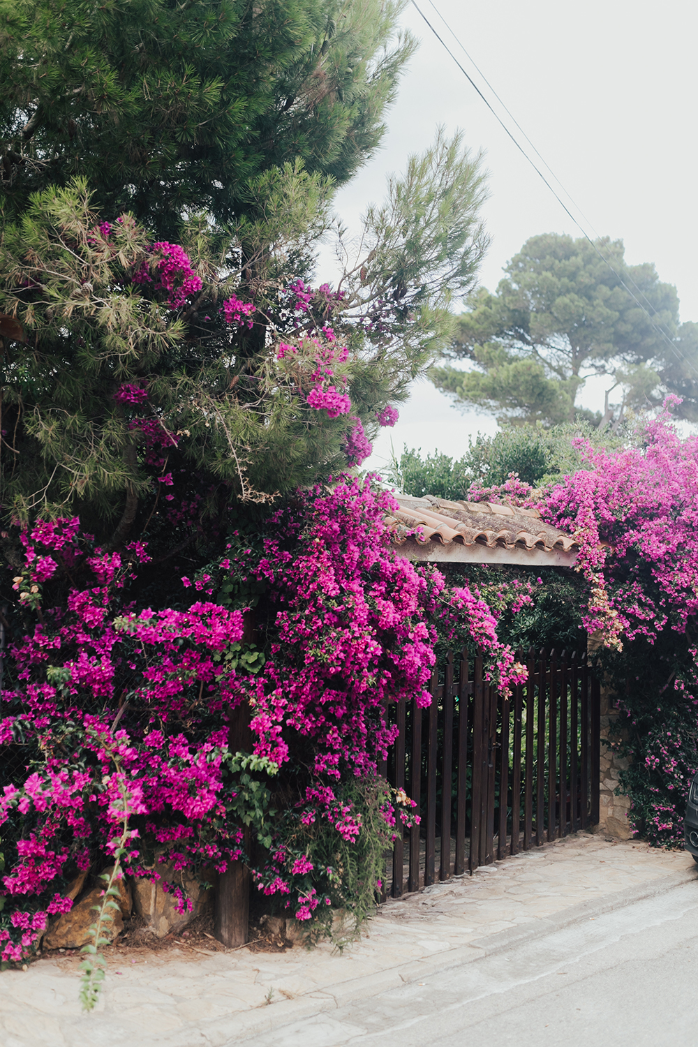 livvyland-blog-olivia-watson-travel-fashion-blogger-barcelona-spain-costa-brava-pals-beach-catalonia-bougainvillea