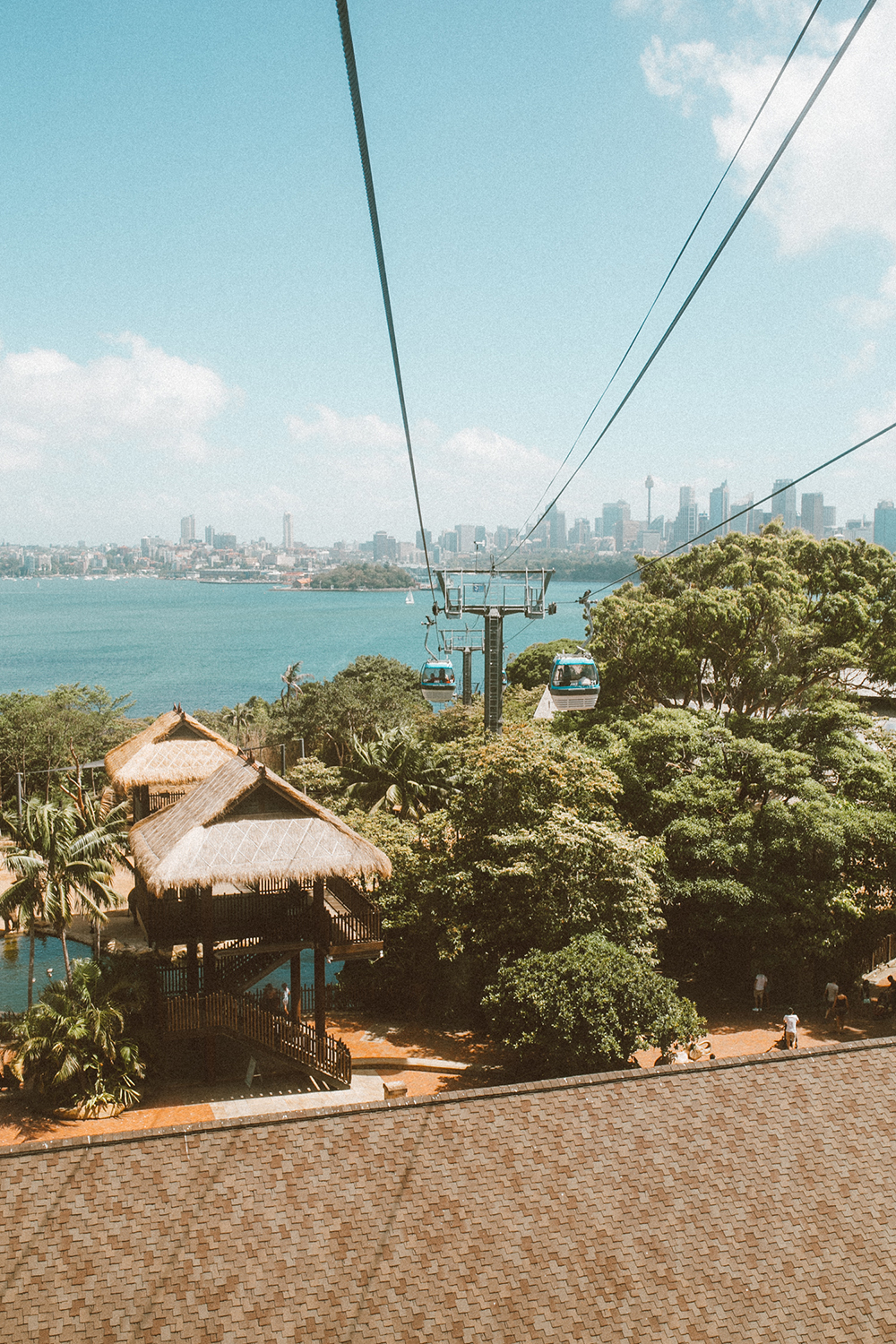 livvyland-blog-olivia-watson-austin-texas-fashion-travel-lifestyle-blogger-sydney-melbourne-australia-taronga-zoo-tram-view