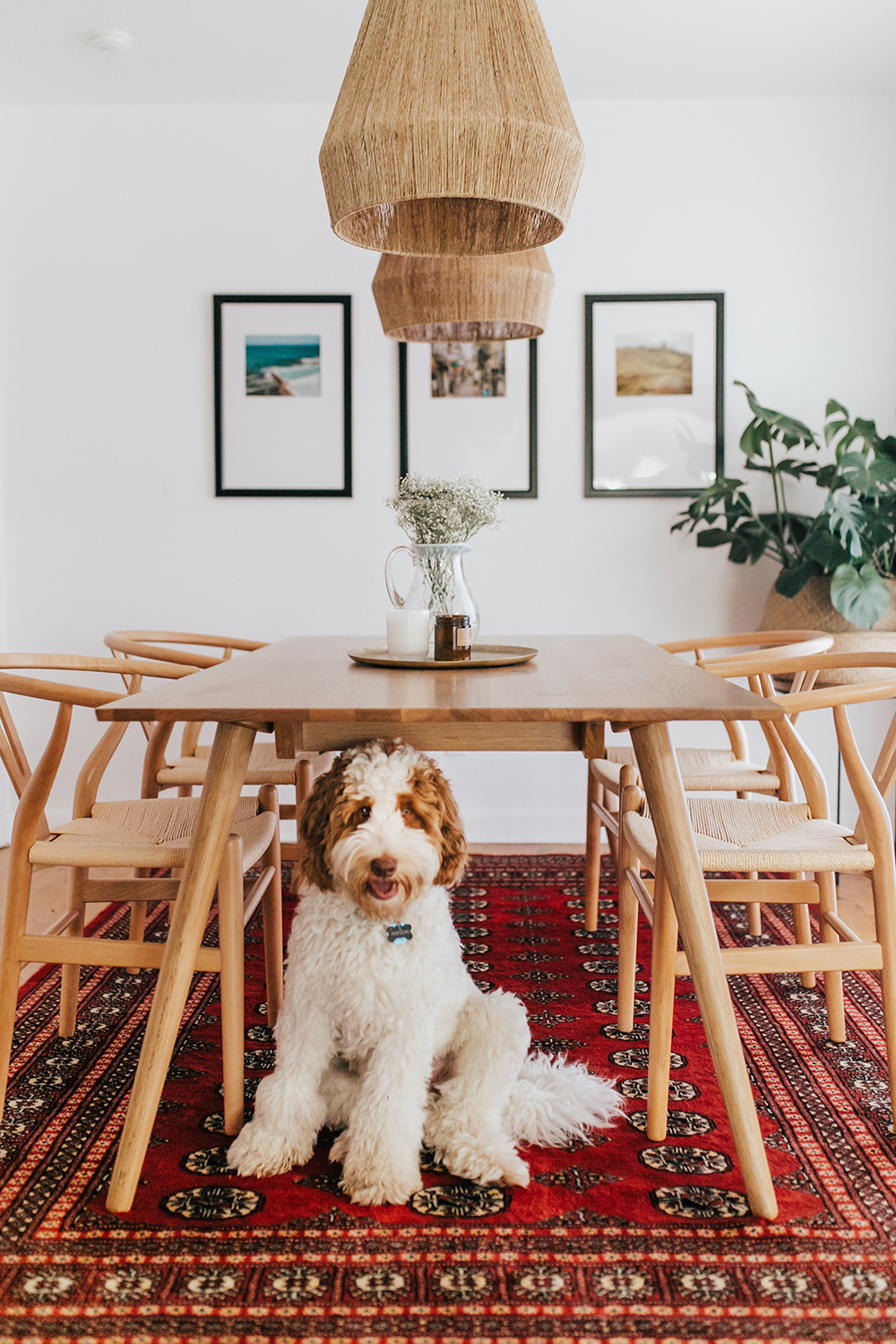 livvyland-blog-olivia-watson-austin-texas-lifestyle-blogger-modern-bohemian-bungalow-dining-room-kitchen-1
