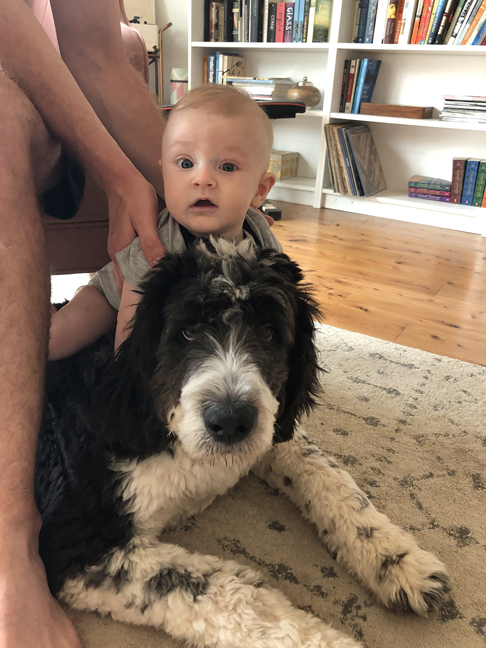 jude-four-month-update-lulu