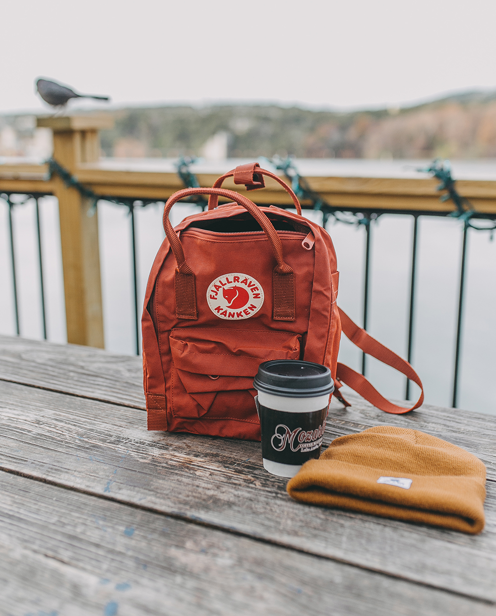 livvyland-blog-olivia-watson-austin-texas-lifestyle-motherhood-blogger-mozarts-coffee-fjallraven-kanken-terracotta-mini-backpack-1