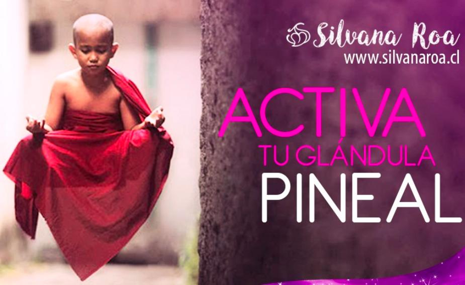Activación Glándula Pineal Junio por Silvana Roa