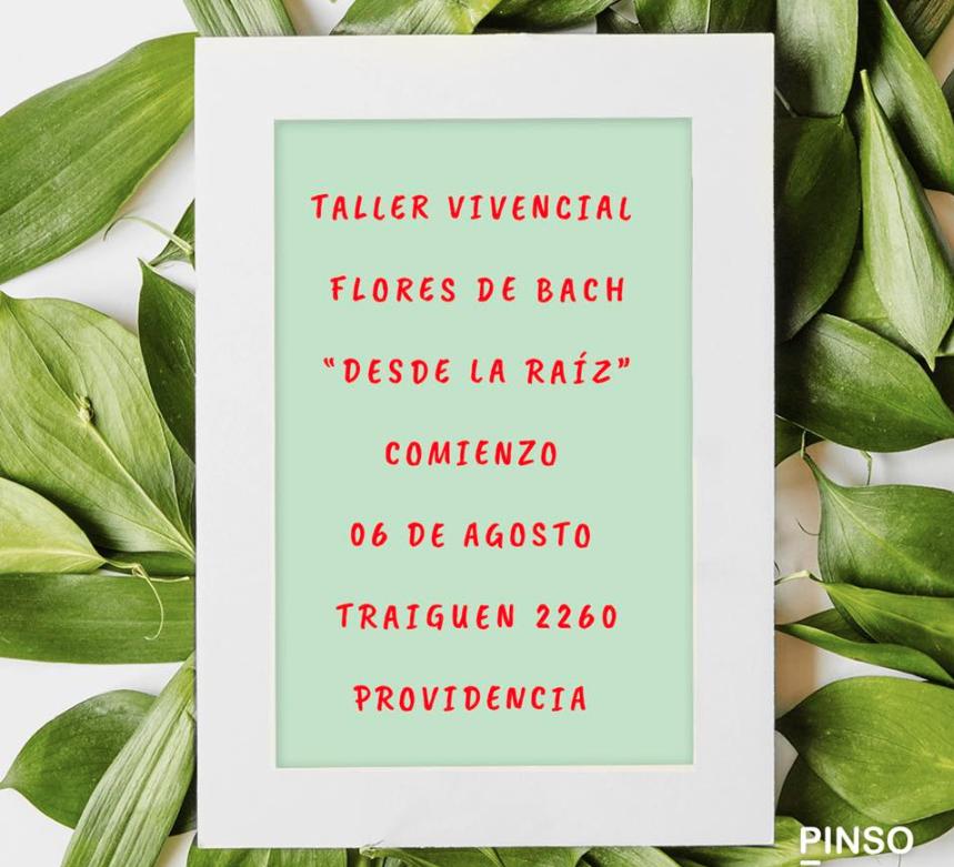 """Taller Vivencial Flores de Bach """"Desde la raíz"""""""