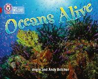Cover for Oceans Alive Band 14/Ruby by Angie Belcher