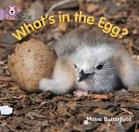 Cover for What's in the Egg? Band 00/Lilac by Moira Butterfield