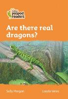 Cover for Level 4 - Are there real dragons? by Sally Morgan