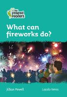 Cover for Level 3 - What can fireworks do? by Jillian Powell