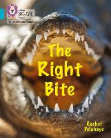 Cover for The Right Bite Band 07/Turquoise by Rachel Delahaye