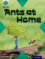Cover for Project X Origins: Lime Book Band, Oxford Level 11: Underground: Ants at Home by Haydn Middleton