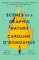 Cover for Scenes of a Graphic Nature 'A perfect page-turner ... I loved it' - Dolly Alderton by Caroline O'Donoghue