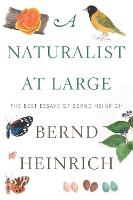 Cover for Naturalist At Large: The Best Essays of Bernd Heinrich by Bernd Heinrich