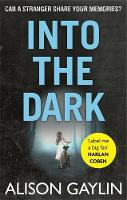 Cover for Into the Dark by Alison Gaylin