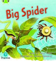 Cover for Bug Club Phonics Fiction Year 1 Phase 5 Set 27 Big Spider by Teresa Heapy