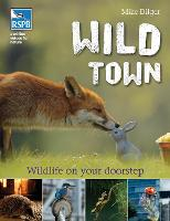 Cover for Wild Town by Mike Dilger