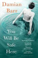 Cover for You Will Be Safe Here by Damian Barr
