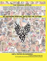 Cover for Re-defining Martial Arts for the Future  by Anthony Manning