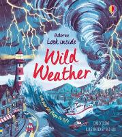 Cover for Look Inside Wild Weather by Emily Bone