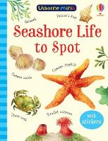 Cover for Mini Books Seashore Life to Spot by Sam Smith