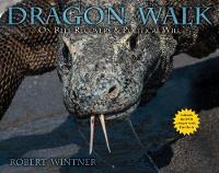 Cover for Dragon Walk  by Robert Wintner