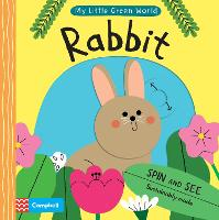 Cover for Rabbit by Campbell Books