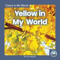 Cover for Colors in My World: Yellow in My World by Brienna Rossiter