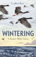 Cover for Wintering  by Stephen Rutt