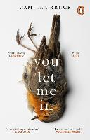 Cover for You Let Me In  by Camilla Bruce