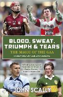 Cover for Blood, Sweat, Triumph & Tears  by John Scally