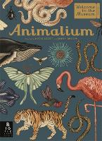 Cover for Animalium by Jenny Broom