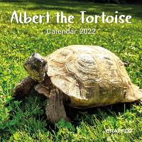 Cover for Albert the Tortoise Calendar 2022 by Ian Brown
