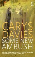 Cover for Some New Ambush by Carys Davies